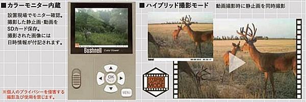 センサーカメラトロフィーカムXLT 現場でモニター確認。静止画・動画をSDカードに保存。動画・静止画を同時に撮影するハイブリッド機能